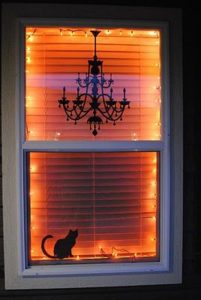eerie-cat-window