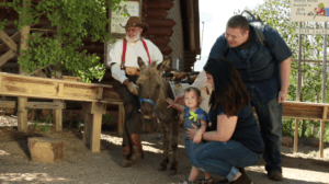 Fun Things to do on Father's Day in Colorado Springs